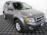 2009 Sterling Grey Metallic Ford Escape XLT V6 #62865163