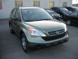 2009 Green Tea Metallic Honda CR-V LX 4WD #62864226