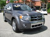 2009 Ford Escape Limited Data, Info and Specs