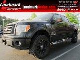 2010 Tuxedo Black Ford F150 FX4 SuperCrew 4x4 #63038282