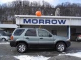 2006 Titanium Green Metallic Ford Escape XLT V6 4WD #6293184