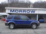 2006 Sonic Blue Metallic Ford Escape XLT V6 4WD #6293189