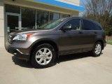 2009 Urban Titanium Metallic Honda CR-V EX #63101177