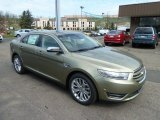 2013 Ginger Ale Metallic Ford Taurus Limited AWD #63169668