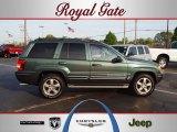 2002 Onyx Green Pearlcoat Jeep Grand Cherokee Overland 4x4 #63194949