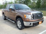 2012 Golden Bronze Metallic Ford F150 Lariat SuperCrew 4x4 #63200828
