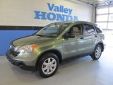 2009 Green Tea Metallic Honda CR-V EX 4WD #63200266