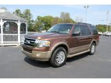 2011 Golden Bronze Metallic Ford Expedition XLT #63243227