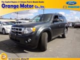 2009 Black Pearl Slate Metallic Ford Escape XLT V6 4WD #63242879