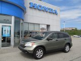2009 Green Tea Metallic Honda CR-V EX 4WD #63319592