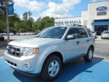 2012 Ingot Silver Metallic Ford Escape XLT #63383842