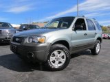 2006 Titanium Green Metallic Ford Escape XLT V6 4WD #63383826