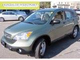 2008 Green Tea Metallic Honda CR-V LX 4WD #63383816