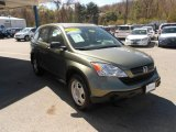 2009 Green Tea Metallic Honda CR-V LX 4WD #63384164