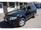 2009 Black Ford Escape XLT V6 4WD #63384051