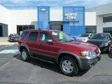 2006 Redfire Metallic Ford Escape XLT V6 4WD #63450605