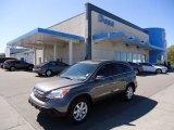 2009 Urban Titanium Metallic Honda CR-V EX-L 4WD #63451033