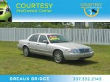 2009 Silver Birch Metallic Mercury Grand Marquis LS Ultimate Edition #63596338