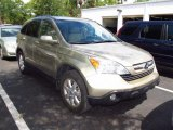 2008 Borrego Beige Metallic Honda CR-V EX-L #63671092