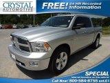 2009 Bright Silver Metallic Dodge Ram 1500 Big Horn Edition Crew Cab #63671675