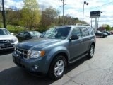 2010 Steel Blue Metallic Ford Escape XLT V6 4WD #63723453