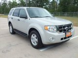 2009 Light Sage Metallic Ford Escape XLT #63781226