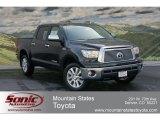 2012 Black Toyota Tundra Platinum CrewMax 4x4 #63780243
