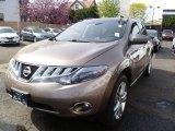 2009 Tinted Bronze Metallic Nissan Murano LE AWD #63848439