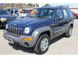 2002 Patriot Blue Pearlcoat Jeep Liberty Sport 4x4 #63848421