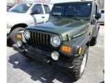 2006 Jeep Green Metallic Jeep Wrangler Rubicon 4x4 #63871495