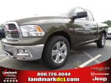 2012 Sagebrush Pearl Dodge Ram 1500 Big Horn Quad Cab #63871232