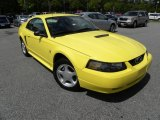 2002 Zinc Yellow Ford Mustang V6 Coupe #63871380