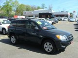 2010 Black Forest Pearl Toyota RAV4 I4 4WD #63913820