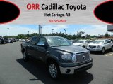 2012 Magnetic Gray Metallic Toyota Tundra Platinum CrewMax 4x4 #63914123