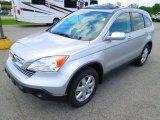 2009 Alabaster Silver Metallic Honda CR-V EX-L #63914309