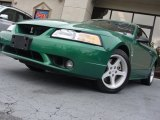 1999 Electric Green Metallic Ford Mustang SVT Cobra Convertible #63978050