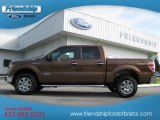 2012 Golden Bronze Metallic Ford F150 XLT SuperCrew 4x4 #64100354