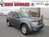 2010 Steel Blue Metallic Ford Escape XLT V6 4WD #64100732