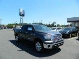 2012 Magnetic Gray Metallic Toyota Tundra Platinum CrewMax 4x4 #64188333