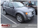 2011 Sterling Grey Metallic Ford Escape XLT V6 #64188291