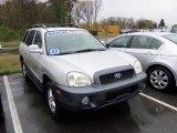 2003 Pewter Hyundai Santa Fe GLS 4WD #64188031