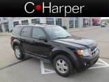 2009 Black Ford Escape XLT V6 4WD #64228221
