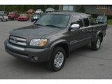 2005 Phantom Gray Pearl Toyota Tundra SR5 Access Cab 4x4 #64289214