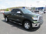 2010 Spruce Green Mica Toyota Tundra TRD Double Cab 4x4 #64288637
