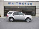 2012 Ingot Silver Metallic Ford Escape XLT 4WD #64353121