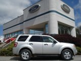 2012 Ingot Silver Metallic Ford Escape XLT 4WD #64404453