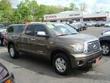 2010 Pyrite Brown Mica Toyota Tundra Limited Double Cab 4x4 #64404676
