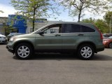 2009 Green Tea Metallic Honda CR-V EX 4WD #64511169