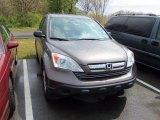 2009 Urban Titanium Metallic Honda CR-V EX 4WD #64510560