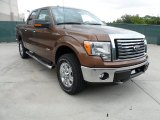 2012 Golden Bronze Metallic Ford F150 XLT SuperCrew 4x4 #64510894